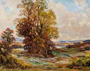 Autumn Landscape near Kirkcudbright