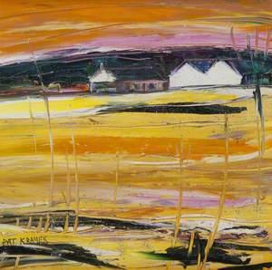Yellow Fields, Montrose