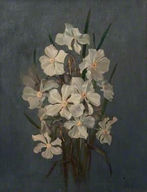 Flower Study, Narcissi