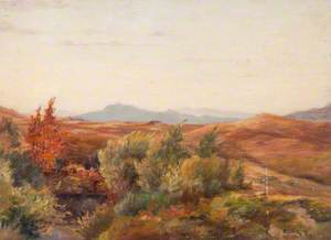 On the Moor, Taynuilt
