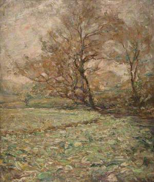 Autumn Trees in the Wind