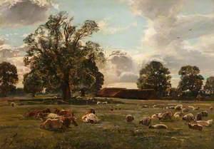 Midsummer Pastures