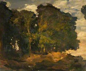 Country Scene, Forest Trees