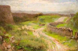 Wetton Quarry
