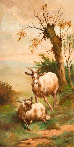 Two Goats in a Field by a Tree