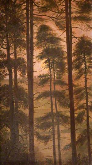 Moon through Fir Trees, Rudyard