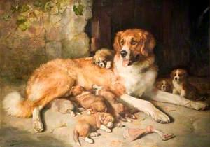 Materfamilias