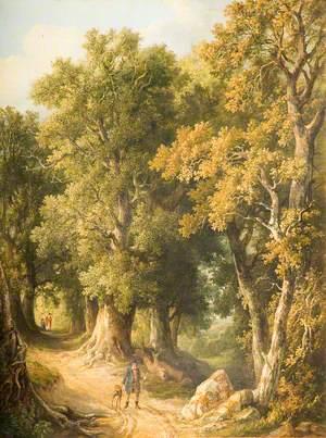 An Oak Glade