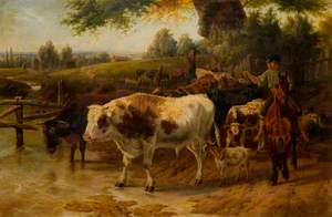 Cattle at a Stream