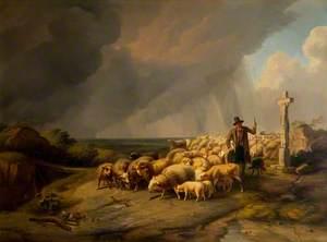 Gathering the Flock