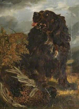 Spaniel with a Pheasant