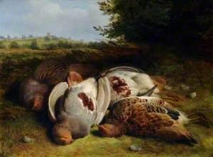 Four Partridge
