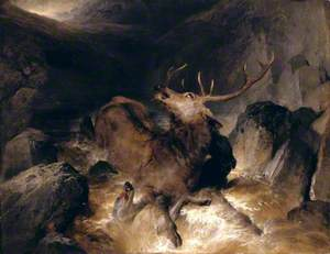 Deer and Deer Hounds in a Mountain Torrent ('The Hunted Stag')