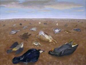 Landscape of Shame