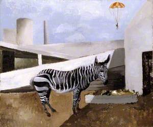 Zebra and Parachute