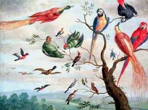 The Chorus of Birds