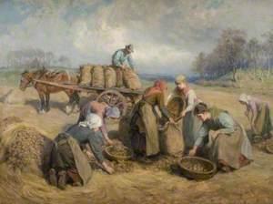 Potato Gatherers, Northumberland