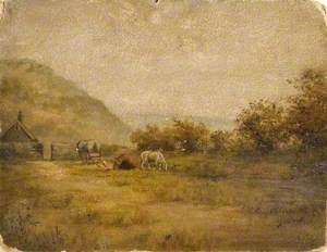 Peacocks Farm and Ballast Hills, Newcastle upon Tyne