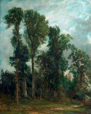 Trees at Hampstead: The Path to Church