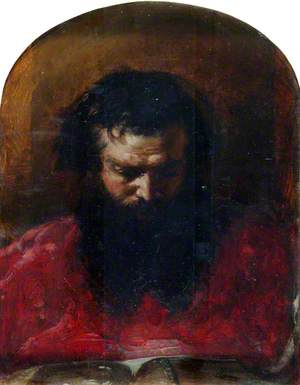 Head of a Cardinal