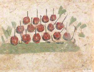 Fruit Piled on the Ground