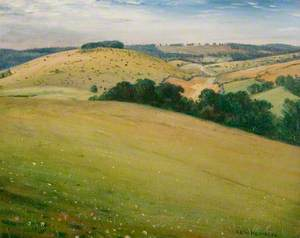 Summer in the Downs