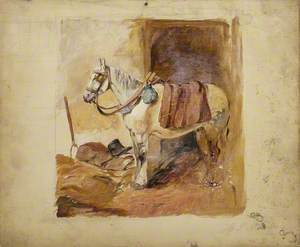 Study of a Horse in Stable