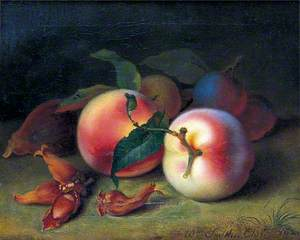 Still Life of Peaches, Plums and Cobnuts