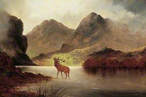 Untitled (Stag)
