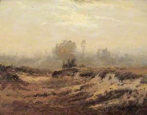 Dunes dans la bruyère