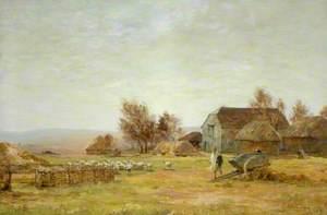 A Sheep Farm on the South Downs