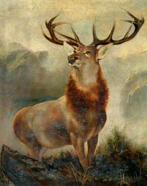 Stag at Bay (Monarch of the Glen)