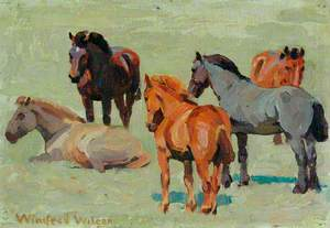 Pit Ponies at Grass