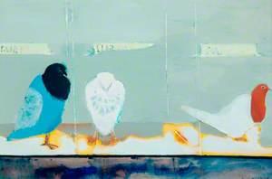 Pigeons*