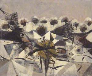 Seeding in Winter