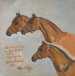 Three Studies of the Head of Hyperion, Derby and Leger Winner, Newmarket