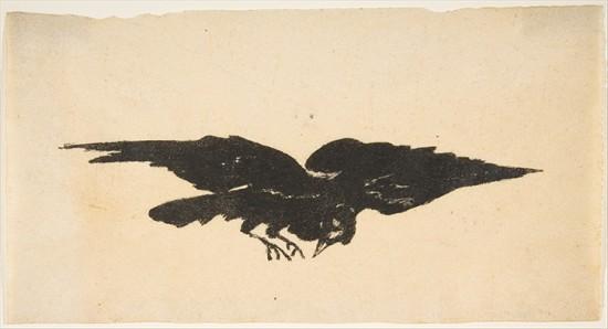 The Flying Raven