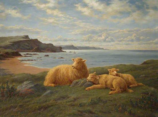 Overlooking Bude Bay (Ewe and Lambs at Rest)