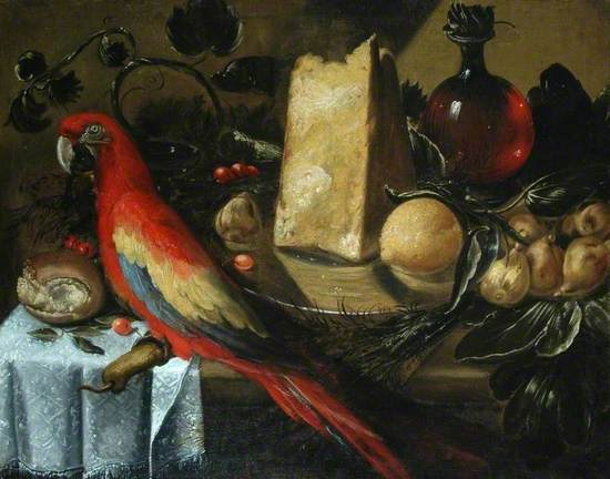 Still Life with a Red Macaw