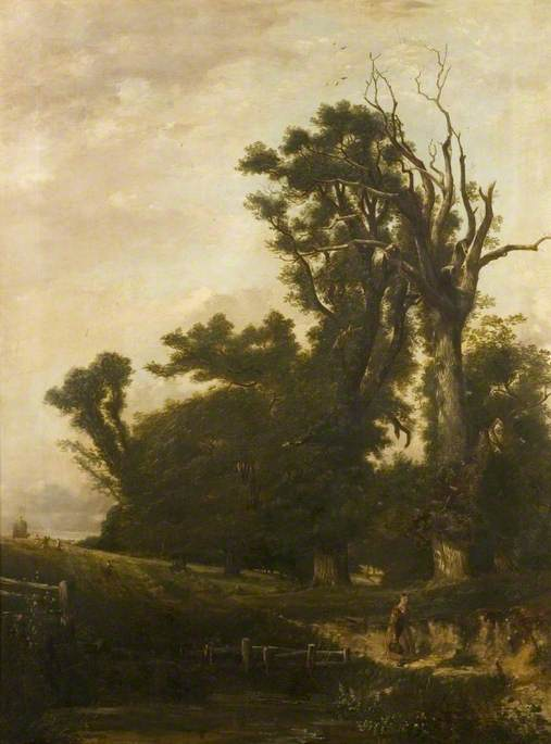 The Withered Elm, Audley End Park