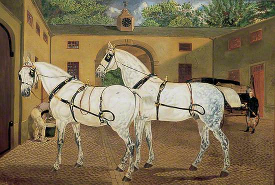 Two Grey Horses in a Stableyard