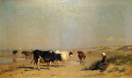 Cattle on the Seashore