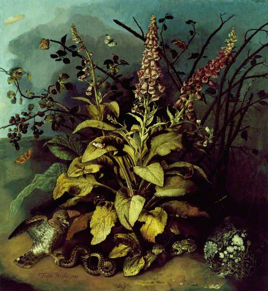Still Life with Insects on Foxgloves