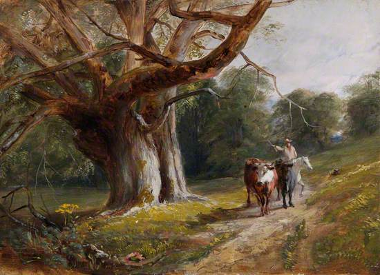 Woodland Scene with Cows