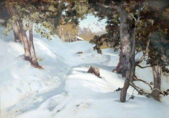 Snowscene in a Forest
