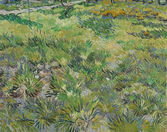 Long Grass with Butterflies