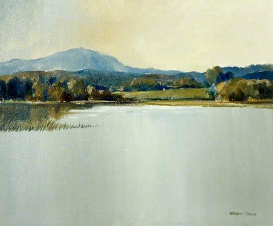 Lake near the Spa, Ballynahinch