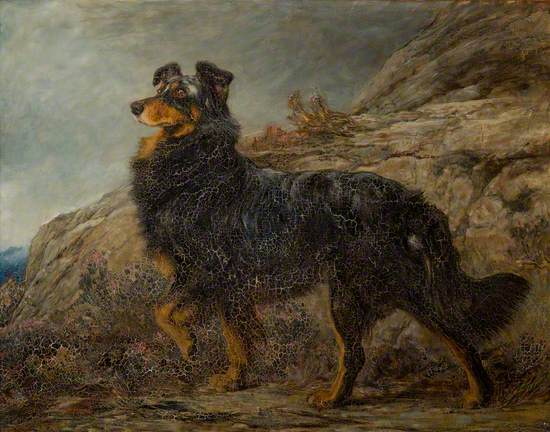 Brighton Rivière, a Collie in a Highland Landscape