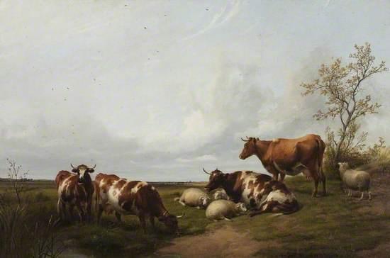 Fordwich Meadows, Canterbury, Kent