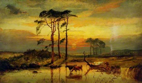 Sunset with Cattle